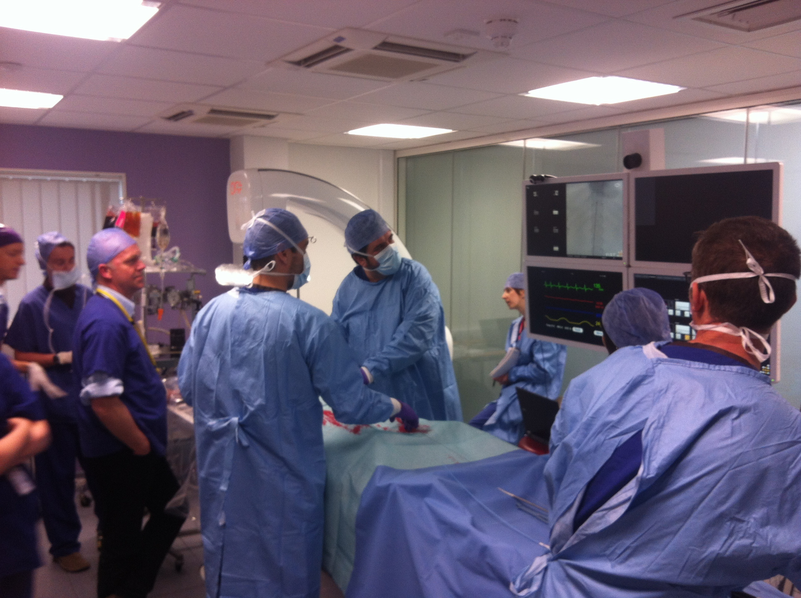 Simulation-based team training on vascular and endovascular procedures